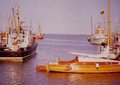 Sturmvogel-im-Seezeichenhafen
